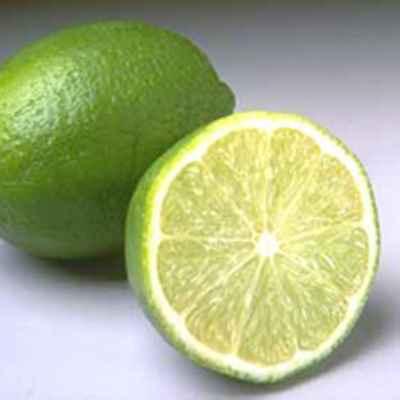 citron vert gros lime bresil colis 4 5kgs environ le kg 63 rv primeurs grossiste en. Black Bedroom Furniture Sets. Home Design Ideas