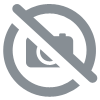 SALADE COMPOSEE POCHE 500 GRS